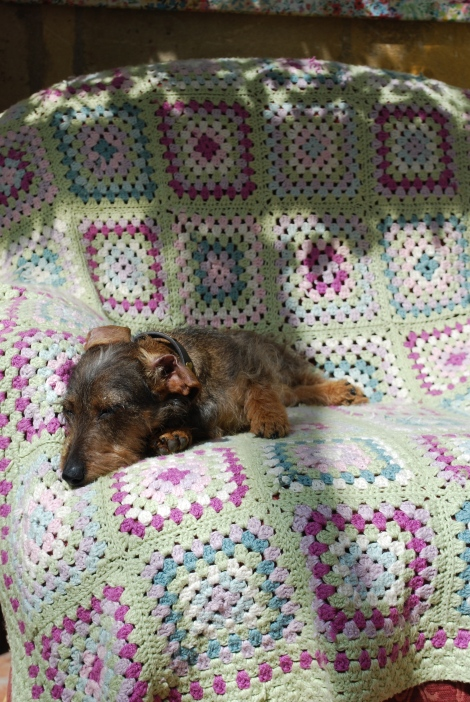 Scrabble prefers the more subdued tones of this granny squares blanket.